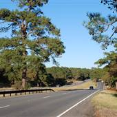 HWY 21 (East of Bastrop)